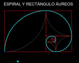 RECTÁNGULO Y ESPIRAL ÁUREAS
