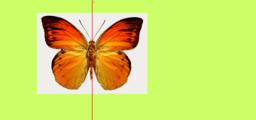 Tengelyes szimmetria másolata