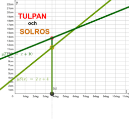 Tulpan och Solros , y = x + 10  och  y = 2x + 4