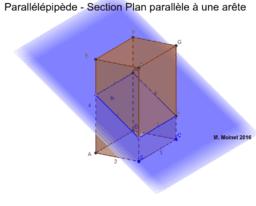 Parallélépipède - Section Plan Parallèle à une Arête