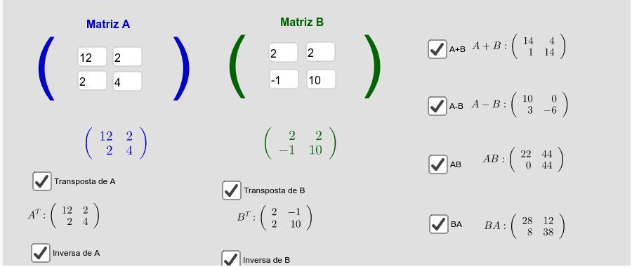 Matrizes 2x2 Press Enter to start activity
