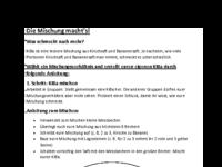 Arbeitsauftragsblatt KiBa.pdf