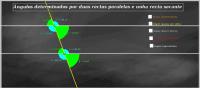 Ángulos determinados por duas rectas paralelas e unha recta secante