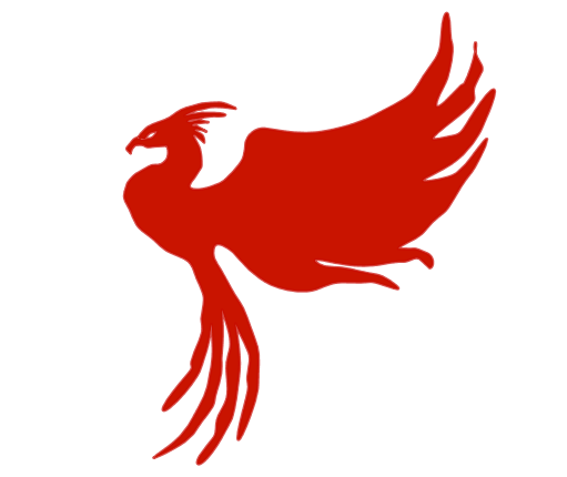 The Phoenix: Approximation using the Discrete Fourier Transform