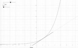 Ableitungsfunktion bei Exponentialfunktionen