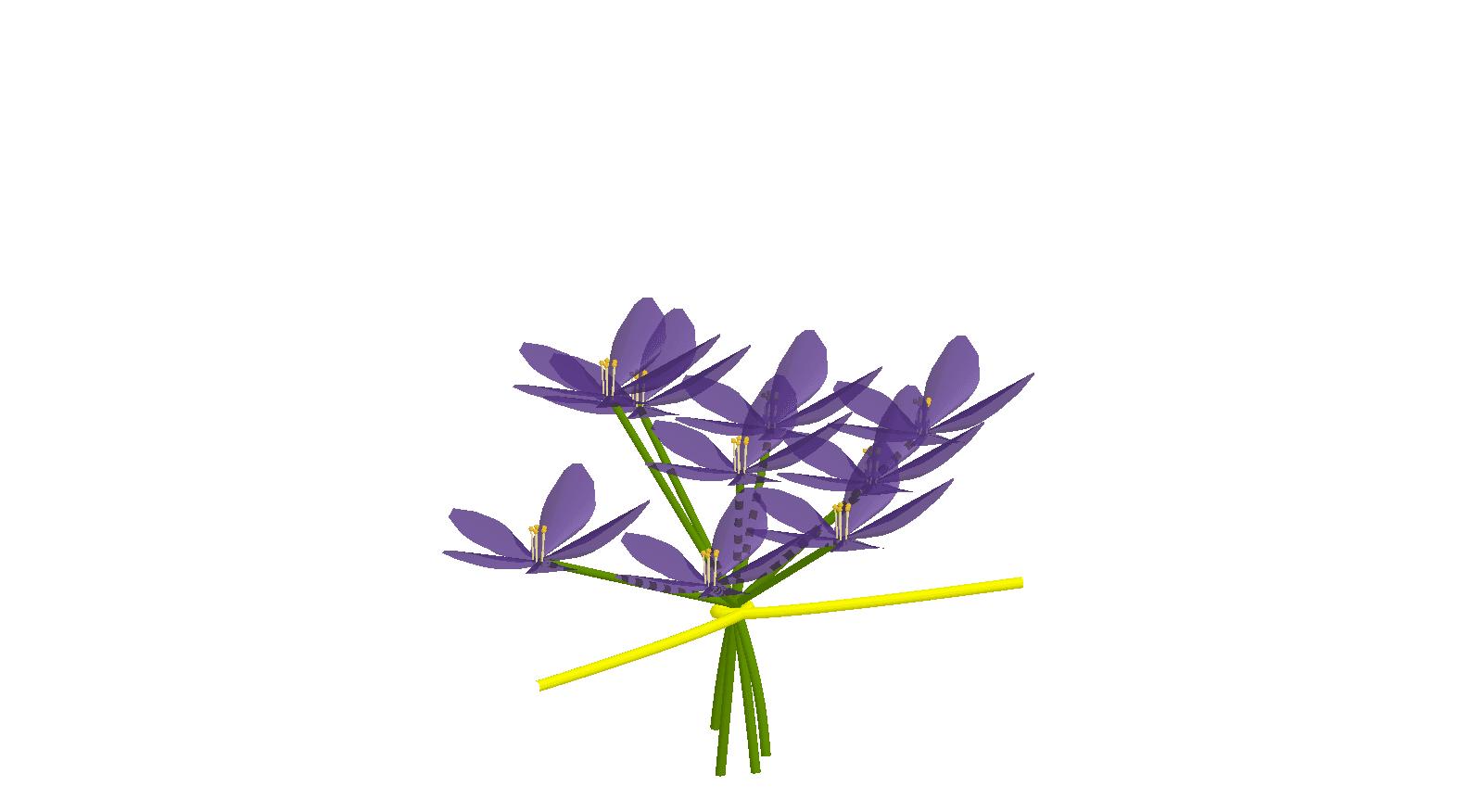 Flores con GeoGebra. Ramito de violetas Presiona Intro para comenzar la actividad