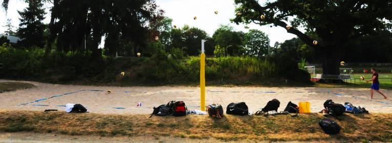 Quelle: http://wiki.ifs-tud.de/biomechanik/projekte/ss2014/volleyball_aufschlag