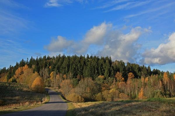 Suur-Munamägi Haanja kõrgustikul Foto: Aleksander Kaasik